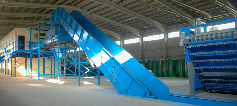 Sorting line with Chain belt conveyor